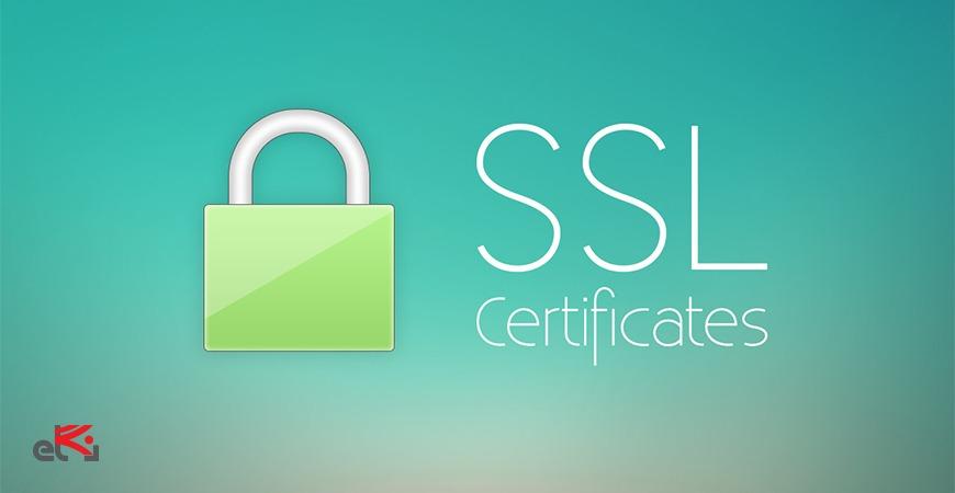 ssl در امنیت وردپرس